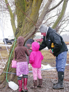 Later in the season, visit a sugar shack during a Maple Weekend event March 17 to 18 and March 24 to 25.