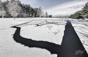 Battle Island State Park, Fulton — Using strong shadows against white snow can create a strong composition where one may not otherwise exist. Courtesy of Everet Regal.
