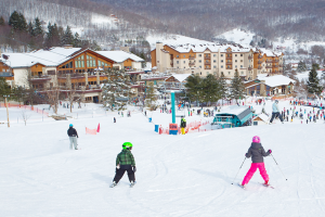 Holiday Valley in Ellicottville provides guests with all the winter sports, plus its famed mountain coaster.