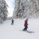 Ski bowl skiers
